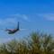 No Fly Zone AZ - March 07, 2015-29